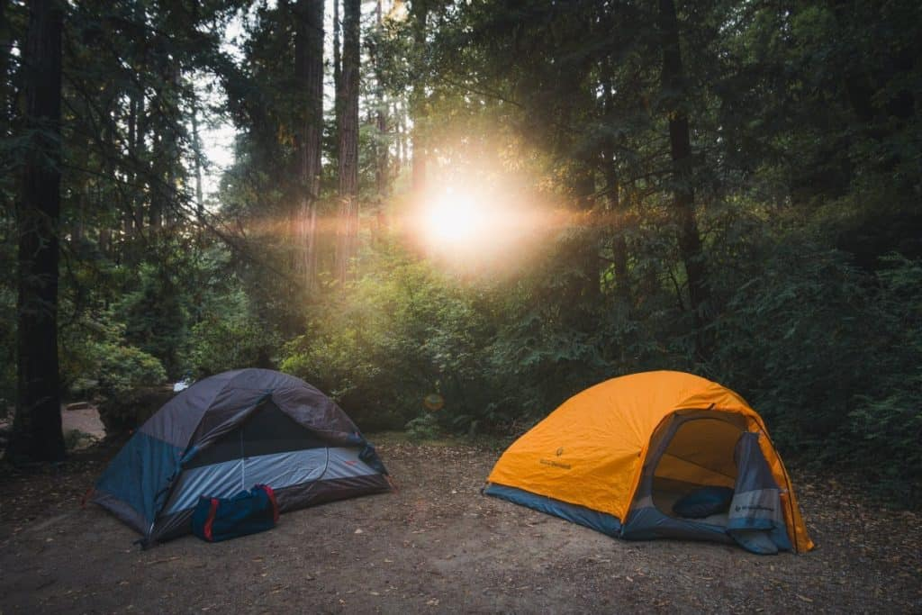 two tents in a forest